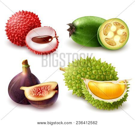 Set Of Realistic Exotic Fruits Including Lychee, Feijoa, Fig And Durian Isolated 3d Vector Illustrat