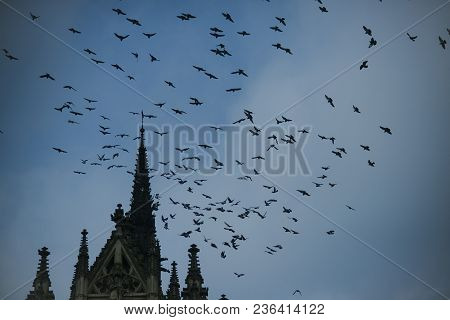 Birds Fly To Warmer Lands. Migratory Birds Concept. Birds Fly Above Tower Or Belfry. Black Birds Or