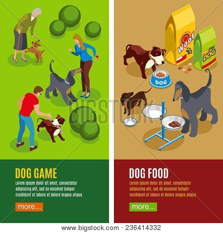 Set Of Vertical Isometric Banners Dog Game And Canine Food Isolated On Green Beige Background Vector