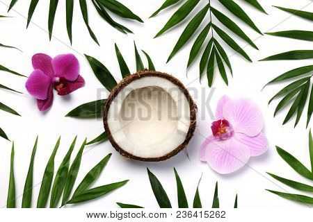coconut, orchids and palm twigs on white background