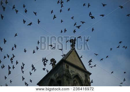 Medieval Architecture, Dramatic Sight, Classy Style, Mystery Concept. Flock Of Birds Flying On Dark