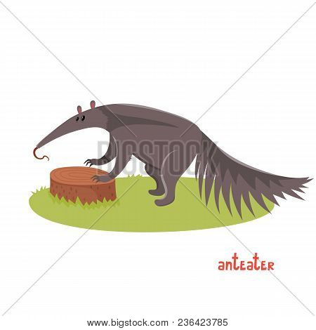 Cute Anteater In Cartoon Style. Vector Illustration Of Wild Animal Isolated On White Background. Cut