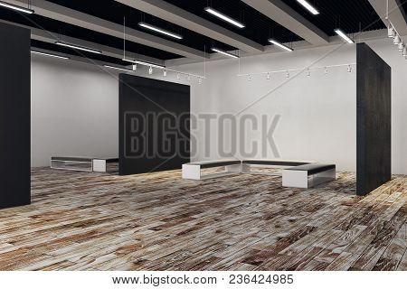 Exhibition Hall With Copy Space On Wall And Bench. Gallery, Art, Exhibit And Museum Concept. Mock Up