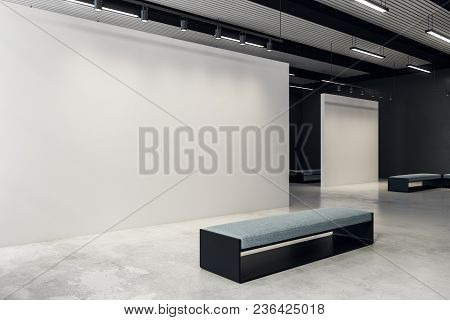 Modern Exhibition Hall With Copy Space On Wall And Bench. Gallery, Art, Exhibit And Museum Concept.