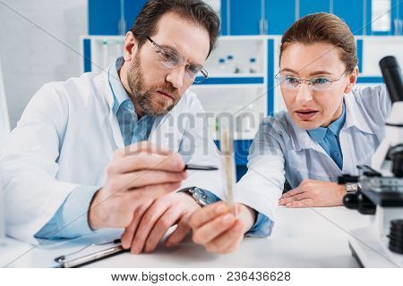 Portrait Of Scientists In Lab Coats And Eyeglasses Looking At Flask With Reagent At Workplace In Lab