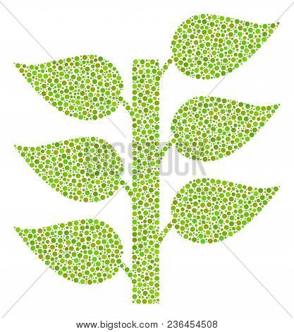Flora Plant Collage Of Round Dots In Various Sizes And Color Tones. Circle Elements Are Organized In