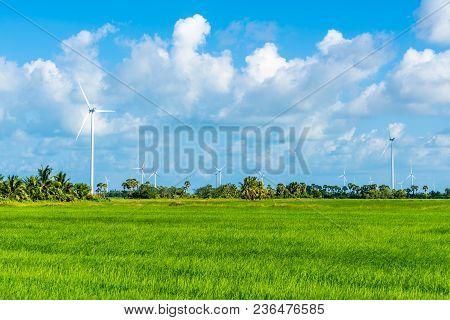 Green Technology Concept. Wind Generators In Field At Hua Sai District,  Nakhon Si Thammarat Provinc