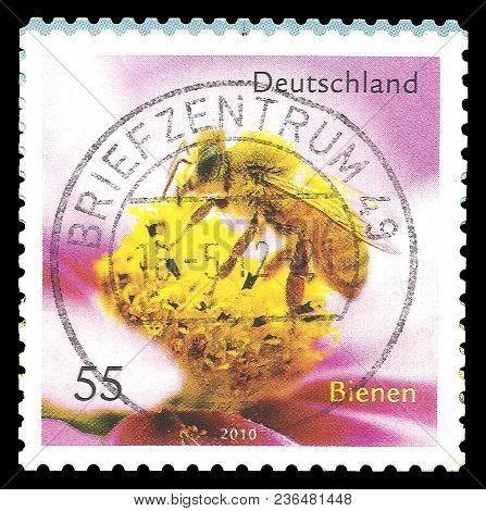 Germany - Circa 2010: Stamp Printed By Germany, Color Edition On Fauna, Shows Honey Bee, Apis Mellif