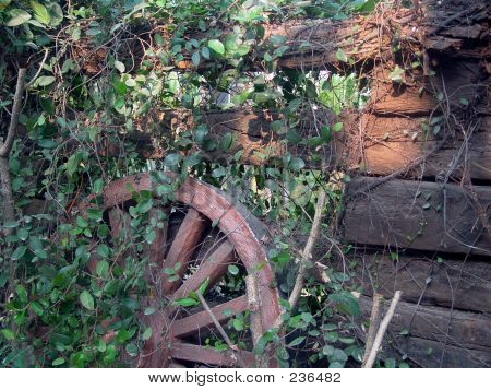 Wheel And Wall