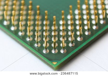 The Golden  Pins On The Processor Closeup
