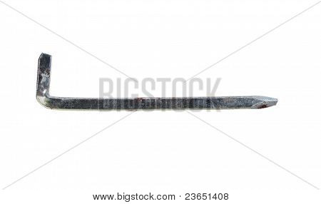 Holdfast On White Background