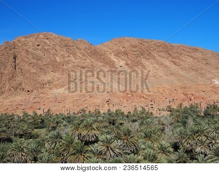 Scenic View Of Old Town Of Tinghir, Green Palm Oasis And Rocky Atlas Mountains Range Landscapes In S