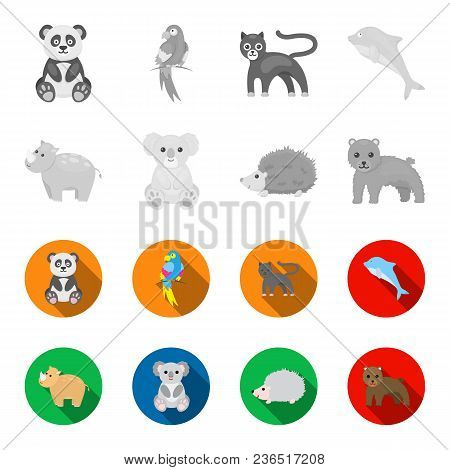 Rhino, Koala, Panther, Hedgehog.animal Set Collection Icons In Monochrome, Flat Style Vector Symbol