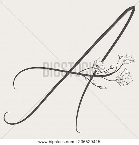 Vector Hand Drawn Flowered A Monogram Or Logo. Uppercase Letter A With Flowers And Branches. Handwri