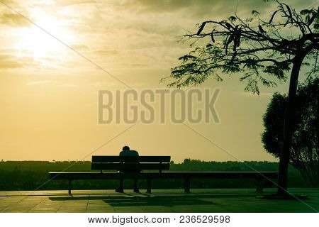 Sad Man Is Sitting On Bench, Back View.