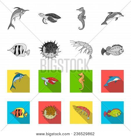 Shrimp, Fish, Hedgehog And Other Species.sea Animals Set Collection Icons In Monochrome, Flat Style