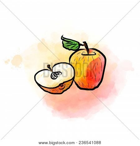 Colored Drawing Of Apples. Fresh Design Of Colorful Fruits Made In Watercolor Style. Vector Marketin