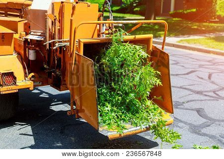 A Tree Chipper Or Wood Chipper Is A Portable Machine Used For Reducing Wood Into Smaller Wood Chips