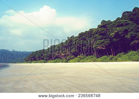Long Palm Tree On A Tropical White Beach On A Island In The South Pacific. Pure White Sand On An Exo