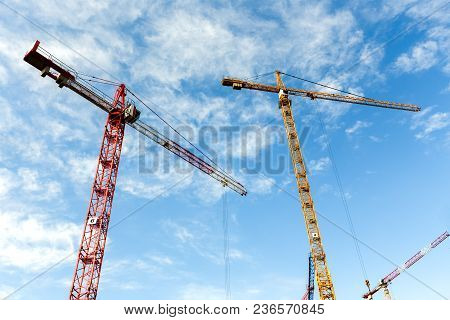 Lot Of High Tower Cranes Work On The Construction Of New Buildings. Wide Angle.