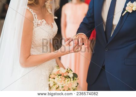 Bride And Groom Exchanging Wedding Rings. Stylish Couple Official Ceremony.