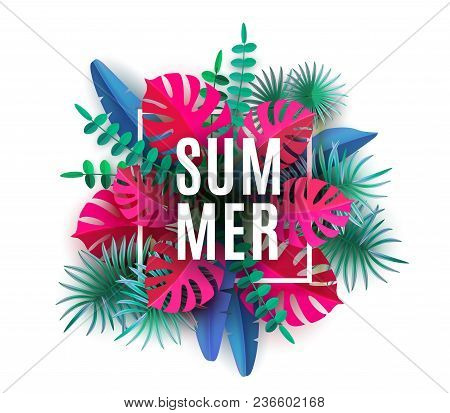 Summer Tropical Leaves Plants Isolated On White Background Trendy Abstract Banner With Tropical Foli