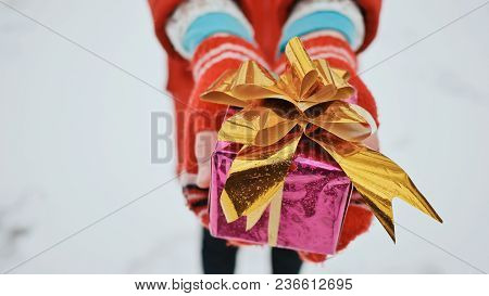 Young Charming Schoolgirl In Mittens Gives A Gift, Looking At The Camera In The Winter Forest. A Wra