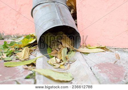 Rain Roof Water Drainage Clogged With Autumn Leaves