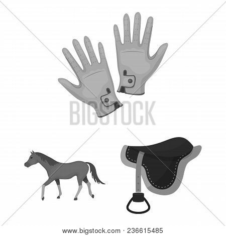 Hippodrome And Horse Monochrome Icons In Set Collection For Design. Horse Racing And Equipment Vecto