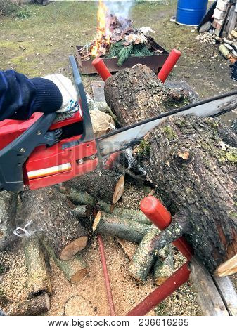 The Man Is Preparing Firewood. He Saws The Logs With A Chainsaw.
