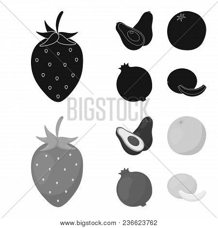 Strawberry, Berry, Avocado, Orange, Pomegranate.fruits Set Collection Icons In Black, Monochrom Styl