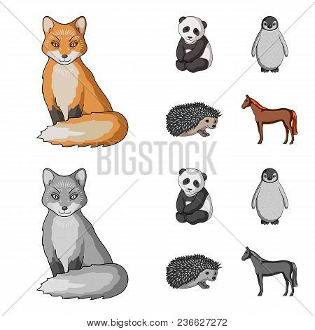 Fox, Panda, Hedgehog, Penguin And Other Animals.animals Set Collection Icons In Cartoon, Monochrome