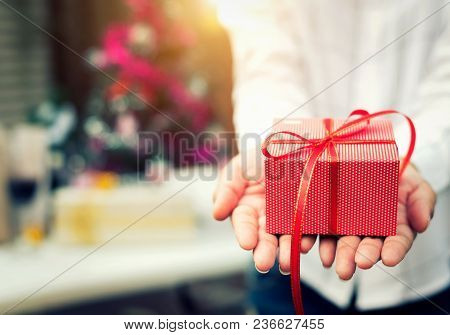 Close Up Shot Young Female Hands Holding Gift For Someone