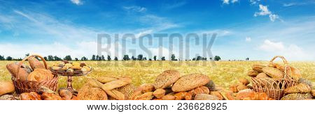Panoramic photo freshly baked breads on background wheat field. Free space for text.