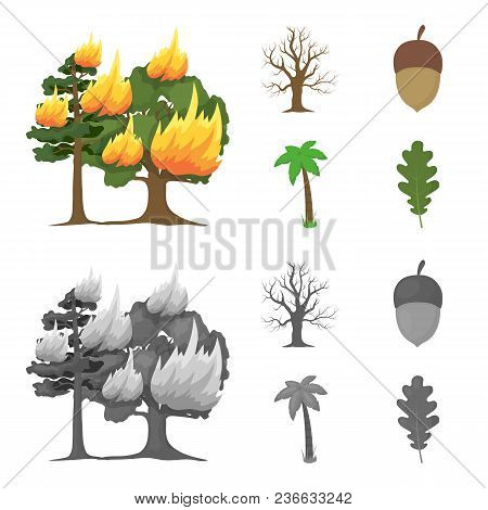 Burning Tree, Palm, Acorn, Dry Tree.forest Set Collection Icons In Cartoon, Monochrome Style Vector