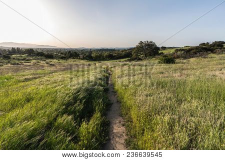 Spring meadow trail on the edge of Los Angeles California at Santa Susana Pass State Historic Park in the west San Fernando Valley area.