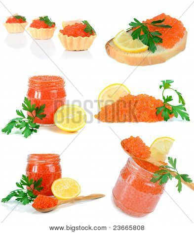 caviar red in a glass jar with lemon and parsley isolated on white background poster