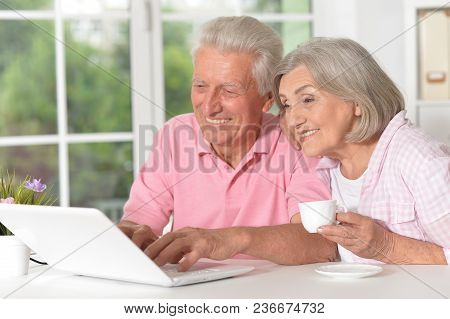 Portrait Of Happy Beautiful Senior Couple Using Laptop At Home