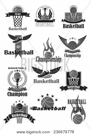 Basketball Sport Game Symbol Set. Basketball Ball, Basket, Champion Trophy Cup, Winged Shoes And Cou