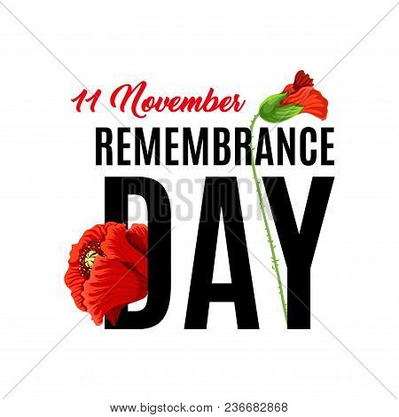 Remembrance Day 11 Of November Also Known As Poppy Day. Honoring Memory Of British Soldiers And Brit