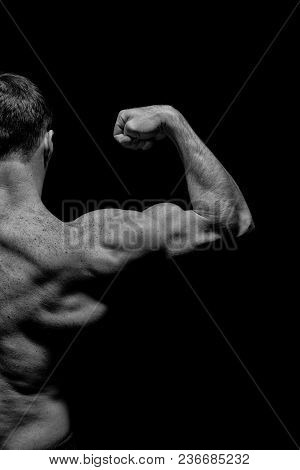 Bodybuilder Show Biceps And Triceps. Man Athlete With Half Torso, Back View. Sportsman Flex Arm Musc