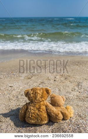 Happy Family On Summer Vacation At Seaside Concept. 3 Cute Brown Teddy Bears Sit At Tropical Beach L