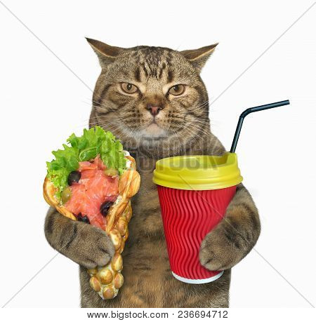 The Cat Holds A Paper Cup Of Coffee And The Smoked Salmon With Bubble Waffles. White Background.