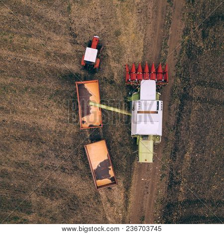 Aerial View Of Combine Harvester Pouring Harvested Corn Crop Grains Into Tractor Trailer, Top View F