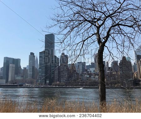 Skyscrapes In Midtown Manhattan Along The East River Viewed From Roosevelt Island