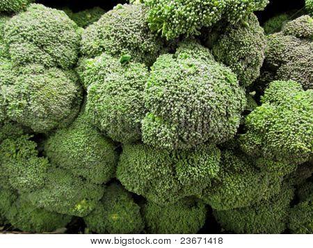 Fresh broccoli in bulk