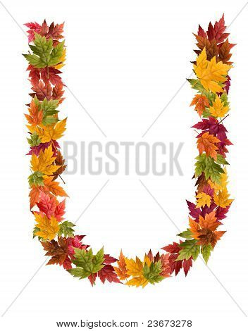 The letter U made from autumn maple tree leaves