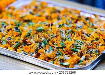Marigolds in a tray during Tihar festival in Kathmandu, Nepal