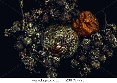 Rrotten Fruit With Mold, Apple And Grapes