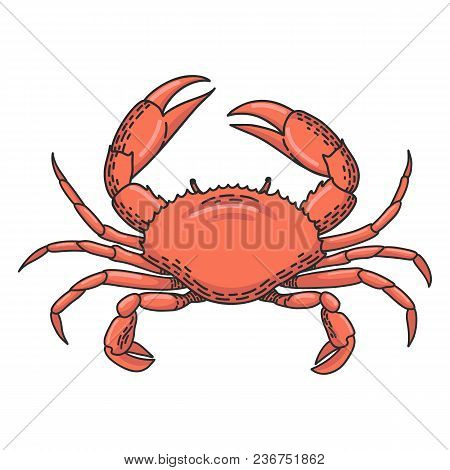 Hand Drawn Vector Cartoon Crab Isolated On White Background